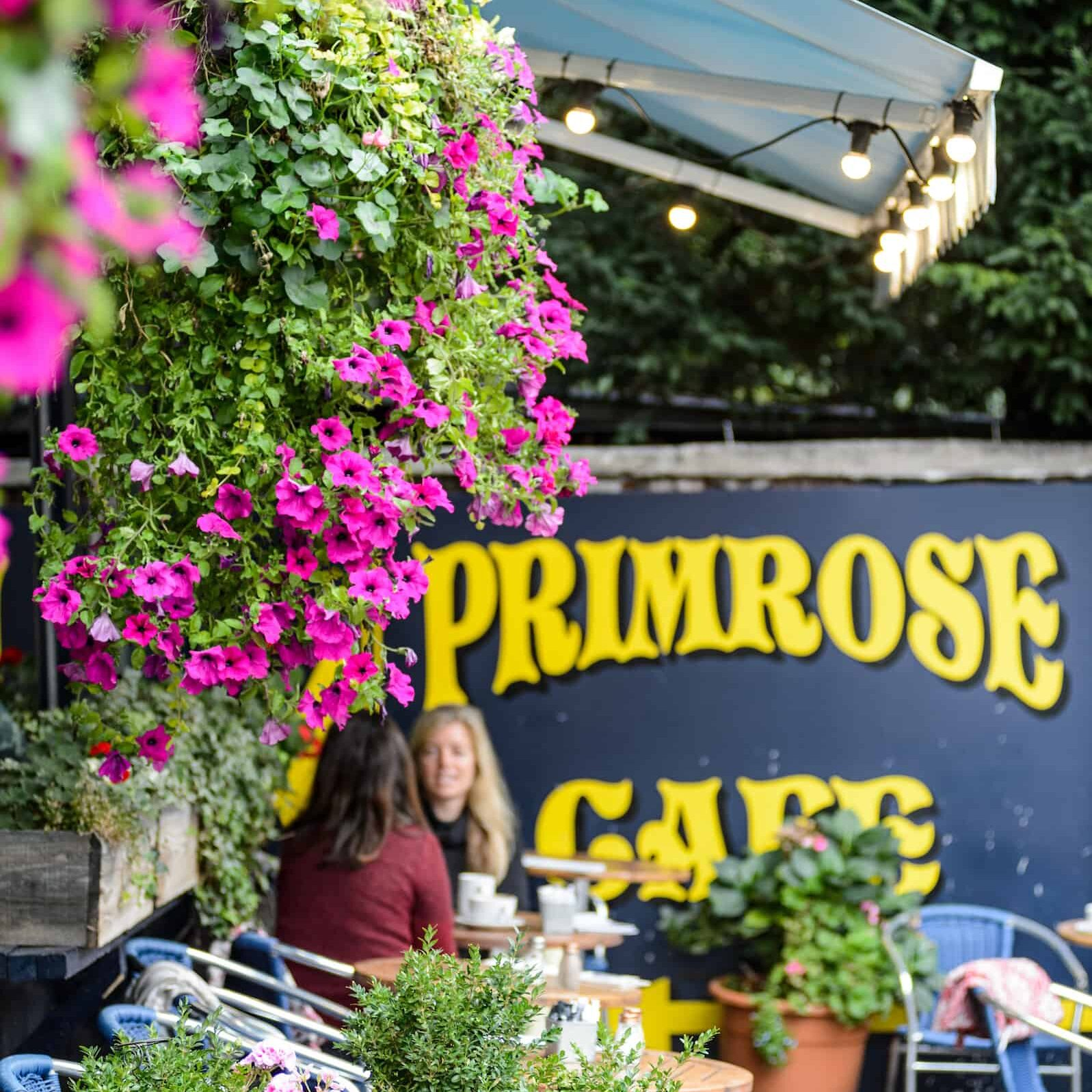 Primrose Cafe (4th October 2016)